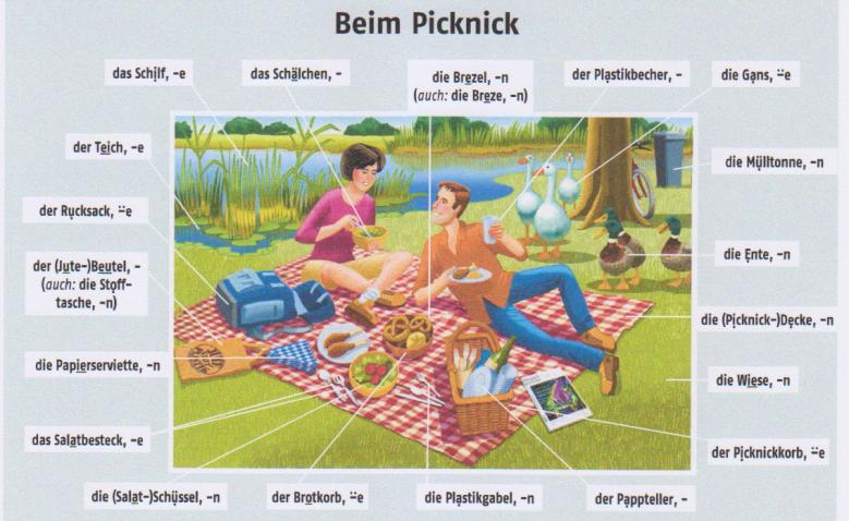 Beim Picknick